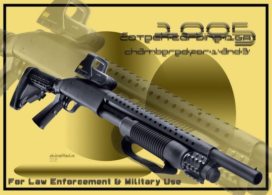 2005 - EOTech Carbine 12GA...
